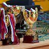 В Новгородской областной филармонии вручат награды по итогам спортивного сезона 2014 года
