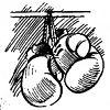 В Великом Новгороде и районах области пройдут мастер-классы по боксу