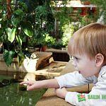 «Зимний сад, зимний сад…»: фоторепортаж из уникального отделения детской областной больницы