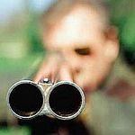В Чудовском районе петербуржец незаконно застрелил годовалого лосёнка