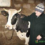 Фермер: украинская свекровь лучше российских федеральных программ