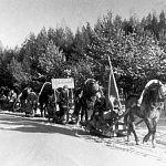 70 лет назад новгородские партизаны проскользнули через блокаду