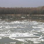 Паводок не угрожает новгородским скотомогильникам и полигонам ядохимикатов