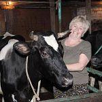 Молоко буренки Лиги: губернатор Митин решил помочь одному фермеру