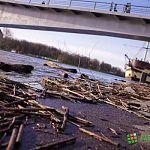 «Весна — большая вода»: фотозарисовки с берегов Волхова