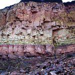 Экологи призывают новгородцев защитить «Ильменский глинт»