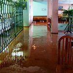 Фотофакт: потоп в столовой НовГУ после сегодняшнего ливня