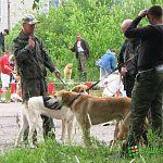 В Малой Вишере состоялась выставка охотничьих собак: фото