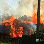 Народный репортер: пожар в деревне Неронов Бор (фото и видео)