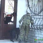 Новгородского подростка не стали сажать за «бомбу» в «Вагоне игрушек»