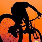 В Великом Новгороде бомж украл велосипед за 70 тысяч рублей