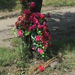 Начальник парфинской полиции погиб в ДТП