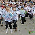 Порядка 3 000 человек примут участие «Кроссе наций» на Колмовской набережной