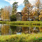 Золотая осень в Кончанском-Суворовском