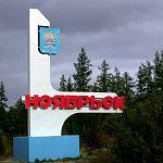 Новгородская фирма разработала проект медицинского квартала для Ноябрьска