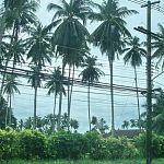 Компании с Сейшельских островов и из Белиза купили большую часть  акций «Новгородоблэнергосбыта»