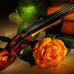 Конкурс стихов о скрипке продолжается! Приз – билет на концерт виртуоза Тиграна Петросяна!