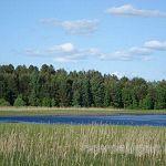 Новгородская красота снова выставлена на продажу