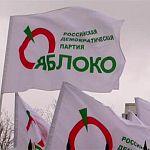 Представители  «Яблока» довольны вторым местом в Чудове