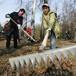 Сегодня новгородцы выйдут на общенациональный субботник