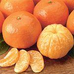 Почему в Новгороде картошка дороже мандаринов? – спросили блогеры Сергея Митина