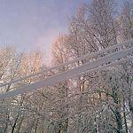 Снег и лёд на проводах оставили без света 207 населённых пунктов в Новгородской области