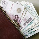 Под нажимом налоговиков около полутысячи новгородских работодателей подняли зарплату сотрудникам