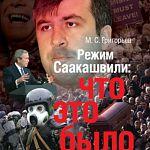 Автор исследования о новгородском Chicago представил книгу о режиме президента Georgia