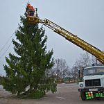 В Поддорье ставят елку и переживают за каток