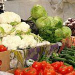 В России хотят запретить производство продуктов с ГМО
