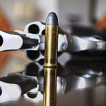 В Новгородской области проверят родителей школьников, имеющих огнестрельное оружие