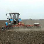 Экс-руководитель облпотребсоюза будет развивать агропромышленный комплекс