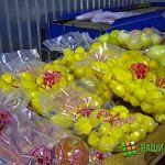 Новгородские власти планируют потеснить на картофельном рынке Санкт-Петербурга Финляндию и Израиль