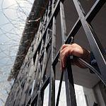 В Новгородской области амнистировали женщину, находящуюся на восьмом месяце беременности
