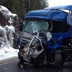 В столкновении микроавтобуса с лесовозом в Ленинградской области погибли десять человек