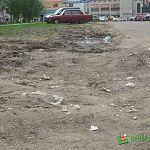 В Новгородской области пересмотрят закон, освободивший любителей парковки на газонах от ответственности