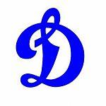 В Великом Новгороде появится детский хоккейный клуб «Динамо»