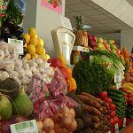 Губернатор поручил открыть во всех районах области сельхозрынки, «Центральный» закрыть не дадут