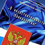Банк и налоговая требуют долги с новгородского фермера Нуну