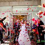 На Красную горку в Новгородской области сыграли почти 130 свадеб