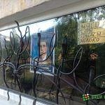В Новгородской области началась предвыборная агитация