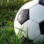 Футбольный клуб «Тосно» в случае выхода в премьер-лигу может переехать в Новгородскую область