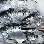 В Новгородской области на два рыбных магазина приходится 120 алкогольных