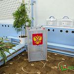 Сегодня - Единый день голосования. В Новгородской области открылись избирательные участки