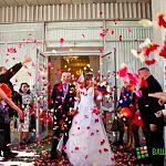 В эти выходные в Новгородской области скрепили свой союз более 90 пар