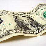 Гражданка из деревни Бураково в Новгородской области похитила кошелёк с двумя долларами США