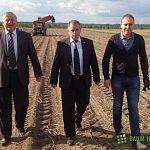 Денис Павлюк вырастил отличный урожай элитного семенного картофеля для новгородских фермеров