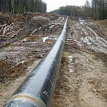 Росприроднадзор проиграл суд хозяевам нефтепровода, прорвавшегося в Любытинском районе