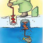 В новгородских магазинах льда на замороженной рыбе было в восемь раз больше нормы