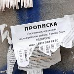 Новгородец прописал в комнате общежития полсотни иностранцев